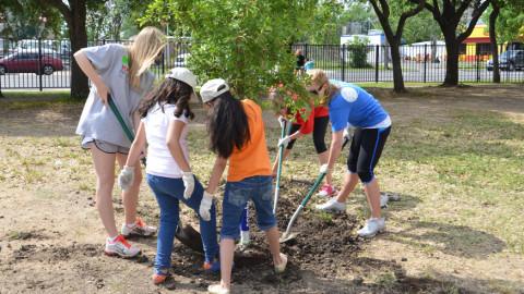 Santa Fe Trail gets new greenery