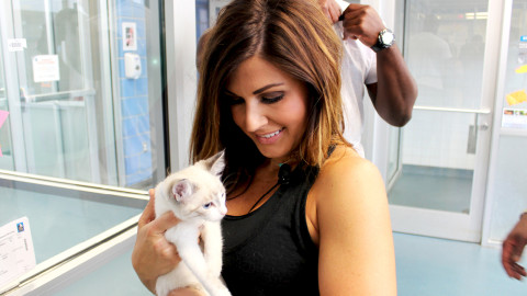 Now Hiring: Dallas Animal Services
