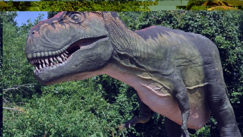 Dallas Zoo sends dinosaurs off with a bang on Labor Day weekend