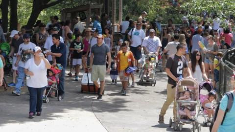 Dallas Zoo sets sixth straight attendance record