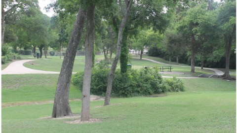 Dallas Park and Recreation recognized for restoration initiatives