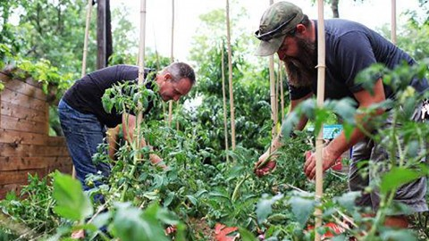 City parking lot may become urban farm for veterans