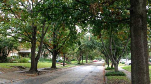 City seeking public input at Neighborhood Public Hearings starting in January 2017