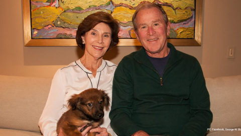 George W. Bush saves puppy found by City of Dallas Code Inspector