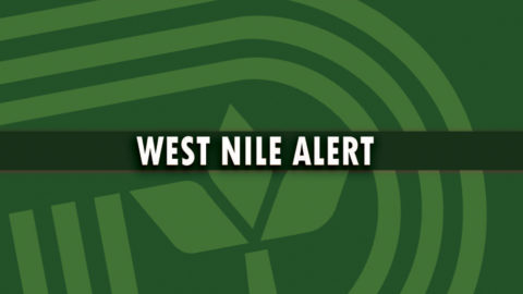 West Nile Alert: DCHHS reports 25th human case of West Nile Virus