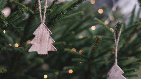 City makes recycling Christmas trees simple