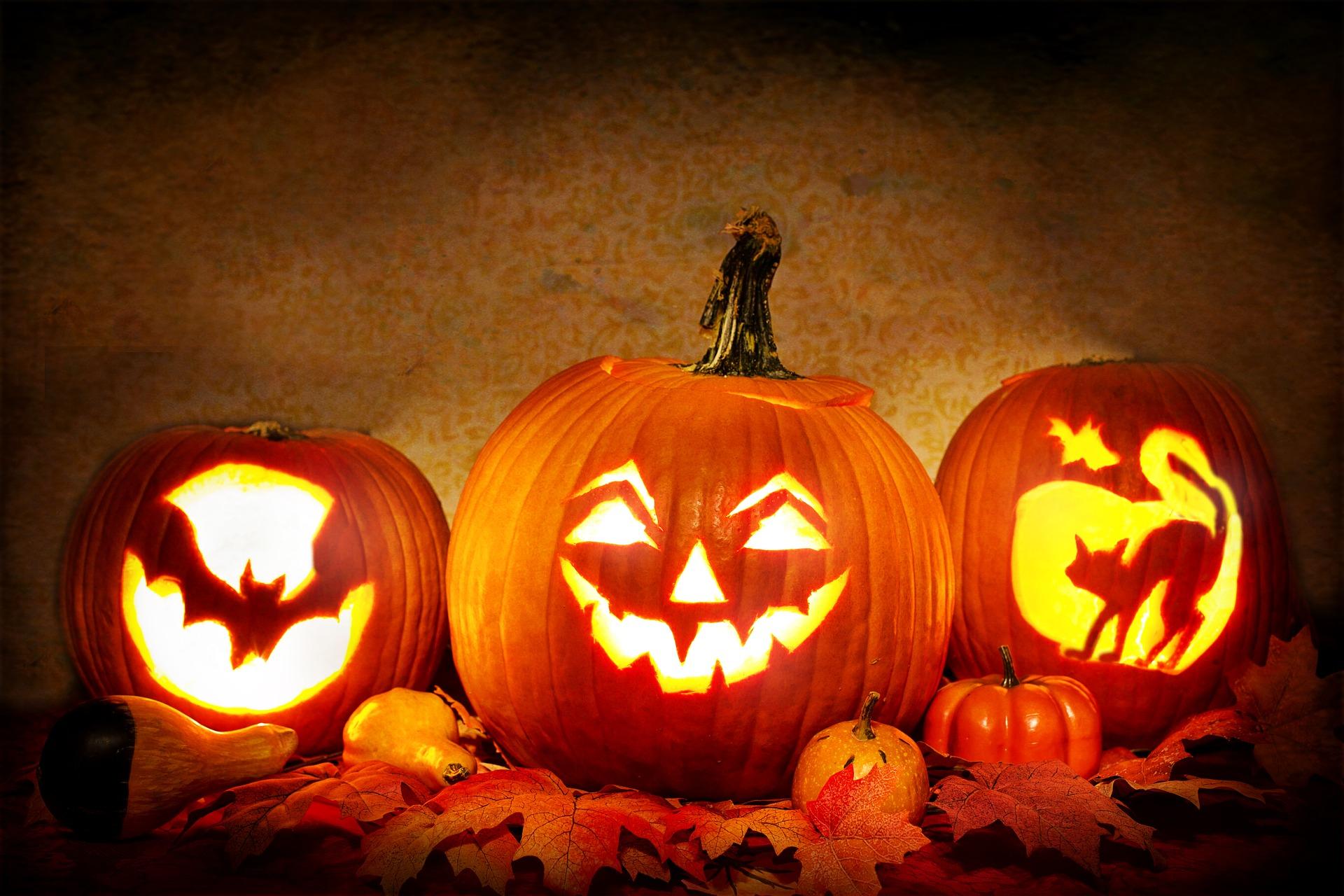 Five festive ways to celebrate Halloween in Dallas - Dallas City News