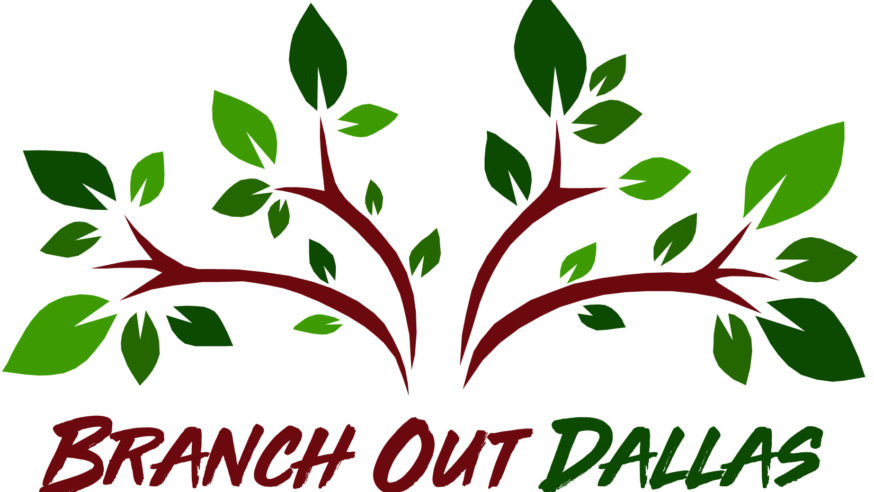 Over 2,600 Trees distributed at Branch Out Dallas event