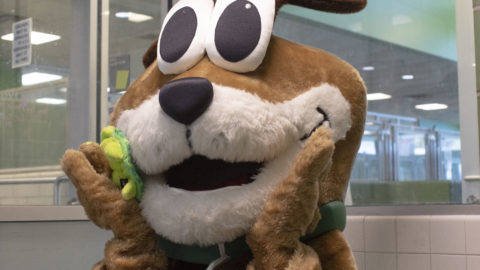 Dallas Animal Services' mascot adopted by VCA Animal Hospitals