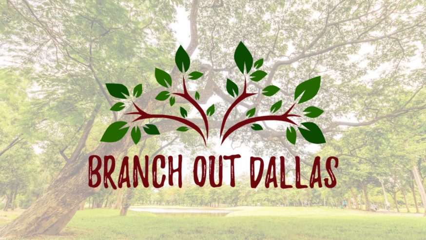 Branch Out Dallas provides free trees to Dallas residents