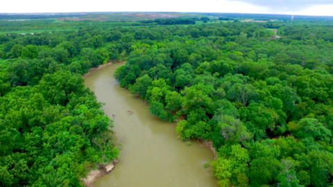 Dallas Environmental Quality & Water Conservation efforts net United Nations Honors