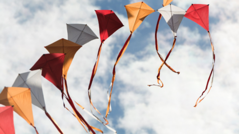 Trinity River Kite Festival promises colorful kites