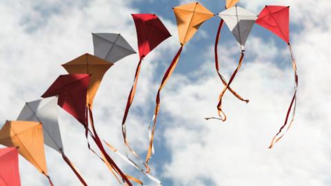 Trinity River Kite Festival promises colorful kites