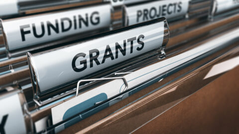 Office of Arts and Culture receives $15K grant from the Government Alliance on Race and Equity (GARE) Innovation and Implementation Fund